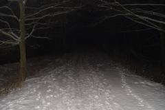 2005.12.20 Zimowa noc