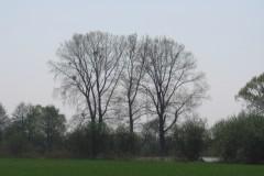 2006.05.07 Jezioro Goździe
