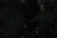 IMG_3515