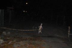 2006.10.26 Miasto nocą