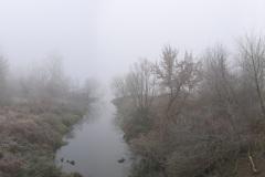 sea_of_mist