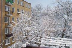 2009.03.25 Grapa zimą
