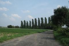 2010.08 Piaski