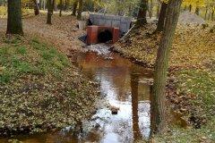 2011.10.31 Park Zdrojowy