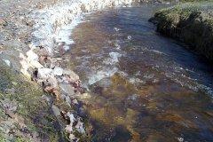 2012.03.03 Woda w Parku Zdrojowym