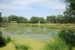 2012.06.16-17 Dni Konstancina w Parku Zdrojowym