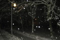 2013.02.08 Zimowa noc