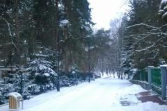 2013.03.09 Zima na bagnach w Parku Zdrojowym