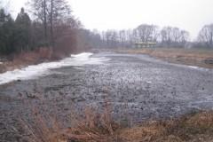 2013.04.12 Wiosenny przybór wody w Jeziorce