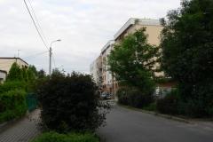 Polna_016