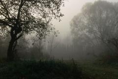 2013.10.22 Mglisty ranek w Jeziornie