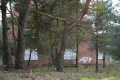 2013.10 Willa Dom Szwedzki tzw. Czerwoniak przy ul. Przebieg