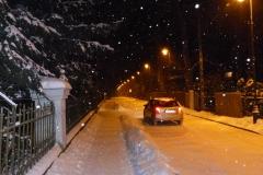 2014.01.27 Zimowy Park Zdrojowy
