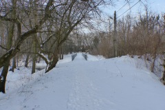 2014.02.01 Zimowa Jeziorka
