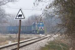 2014.02.22 Pociąg z Siekierek