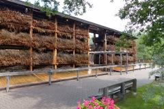 2014.06 Tężnia solankowa w Parku Zdrojowym
