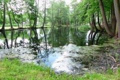 2015.05.28 Zatoka na Jeziorce w Parku