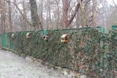 2015.11.26 Karmniki